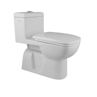 HD101N One Piece Toilet